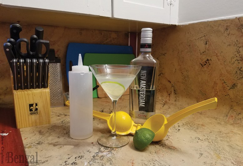 Gimlet cocktail and ingredients.