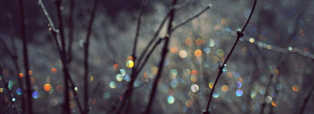 photodune-714913-winter-scene-with-spectrum-light-bokeh-in-grass-l