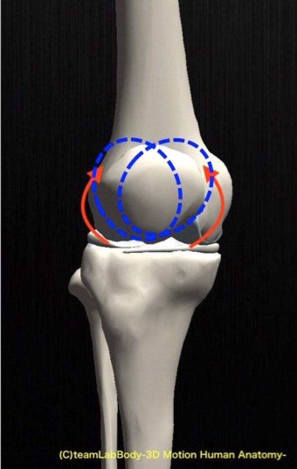 膝蓋骨 回旋