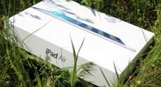 Apple_iPad_Air_InUse (1)