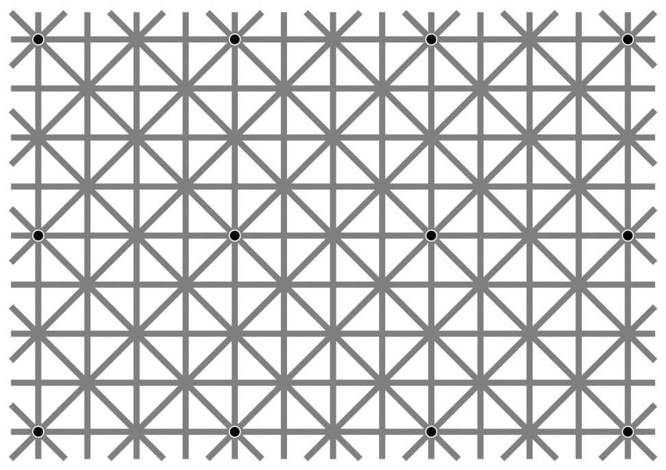 Юзеры Сети ломают голову из-за оптической иллюзии с12 чёрными точками