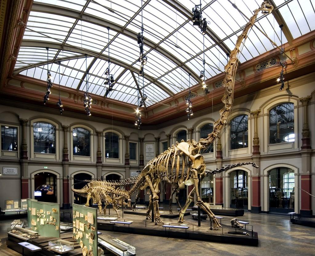 Google создала крупнейшую виртуальную экспозицию динозавров