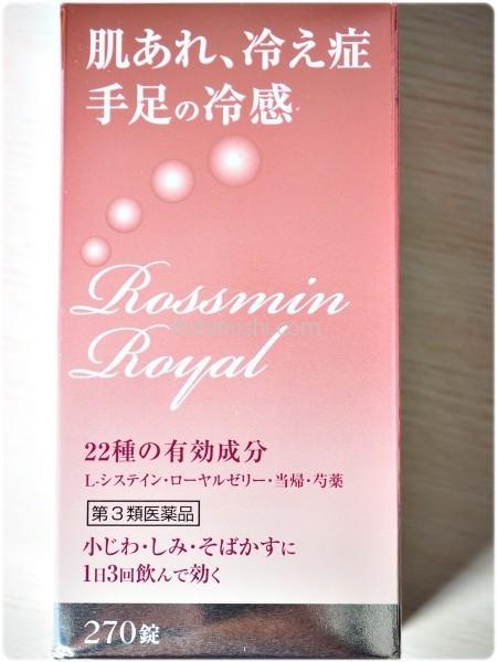 20160102rossmin4