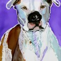 American Pit Bull Terrir 30 Paintings in 30 Days by Lillian Connelly