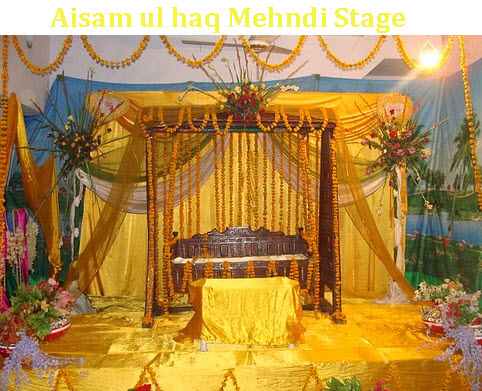 aisam ul haq marriage pictures