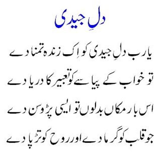 latest-funny-urdu-shayari-2013