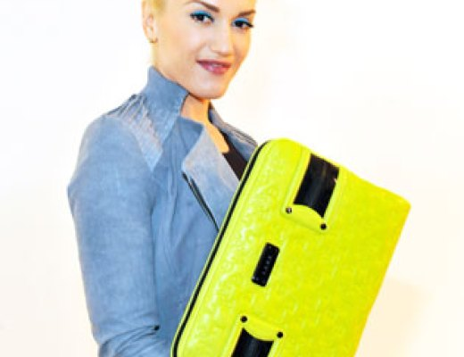 beautiful-laptop-briefcase-for-ladies-2013