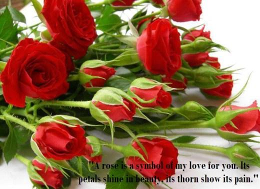 beautiful-flower-arrangement-2013-2014