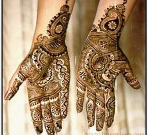 stylish-indian Mehndi Designs For Hands-2013-2014