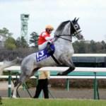 2014年凱旋門賞の見所と日本出走馬のドラマ③ゴールドシップとステイゴールド