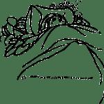 【絵日記】森口ダイナソーの日記 – 植物人間の日常