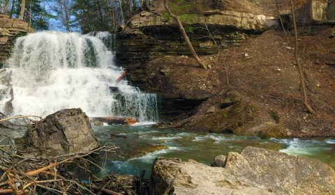 The Lower Falls from their base.