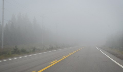 Since it was a fairly cloudy day and the change in elevation was so high at points we actually drove through clouds! It was a little scary though - you couldn't see a thing!