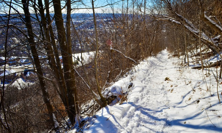 I've Been Bit! A Travel Blog :: Hiking Hamilton