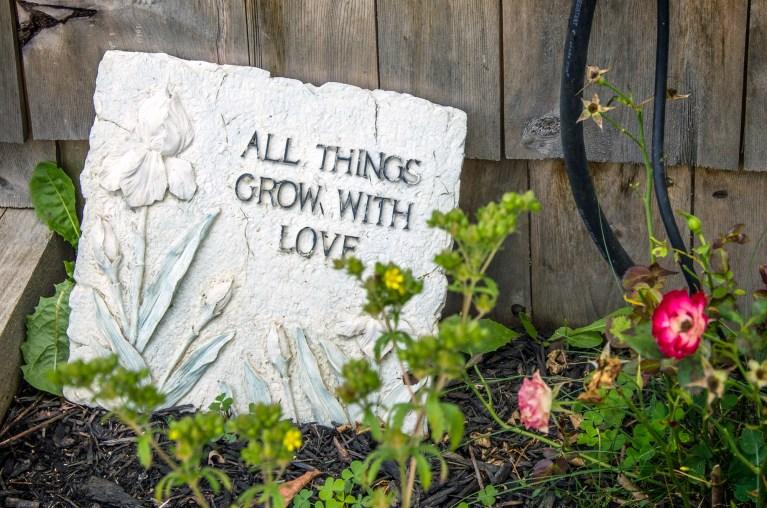 I've Been Bit! A Travel Blog :: Seeking Serenity in Ontario's Highlands