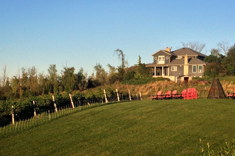 I've Been Bit! A Travel Blog - Grey County Autumn Adventures Coffin Ridge Winery The Resting Place