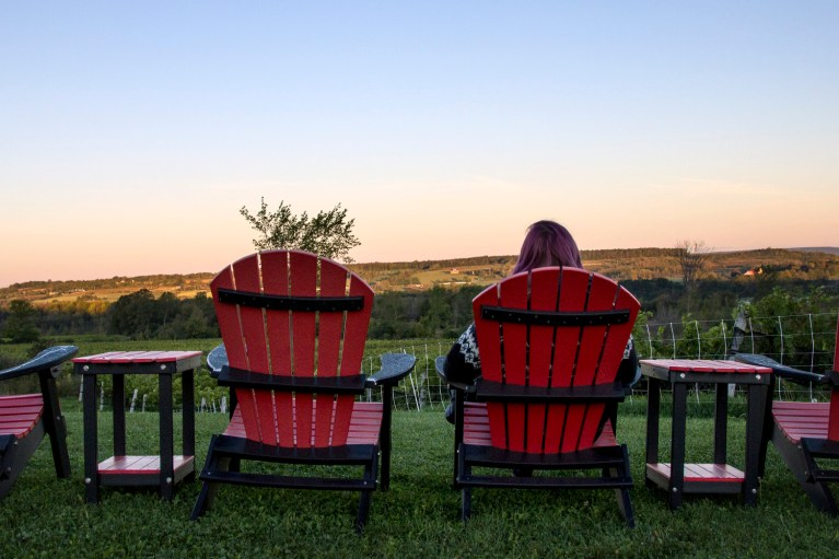 I've Been Bit! A Travel Blog - Grey County Autumn Adventures Coffin Ridge Winery The Resting Place Overlooking Vineyards from Red Chairs