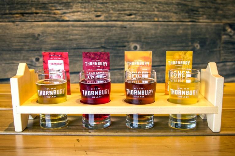 I've Been Bit! A Travel Blog - Grey County Autumn Adventures Thornbury Cider Tasting Flight