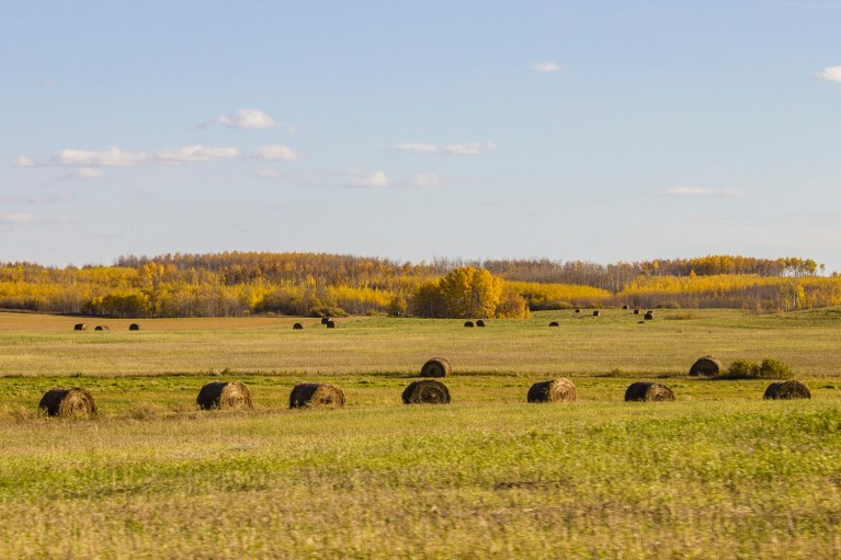 20+ Photos Guaranteed to Inspire a Manitoba Road Trip