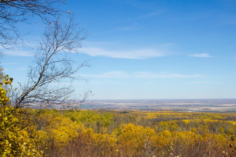 Riding Mountain National Park Lookout, Manitoba Road Trip - 7 Days of Canadian Prairie Adventure :: I've Been Bit A Travel Blog
