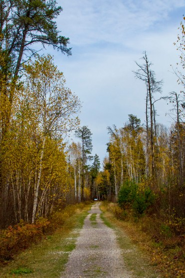 Trail to Viburnum Falls, Manitoba Road Trip - 7 Days of Canadian Prairie Adventure :: I've Been Bit A Travel Blog