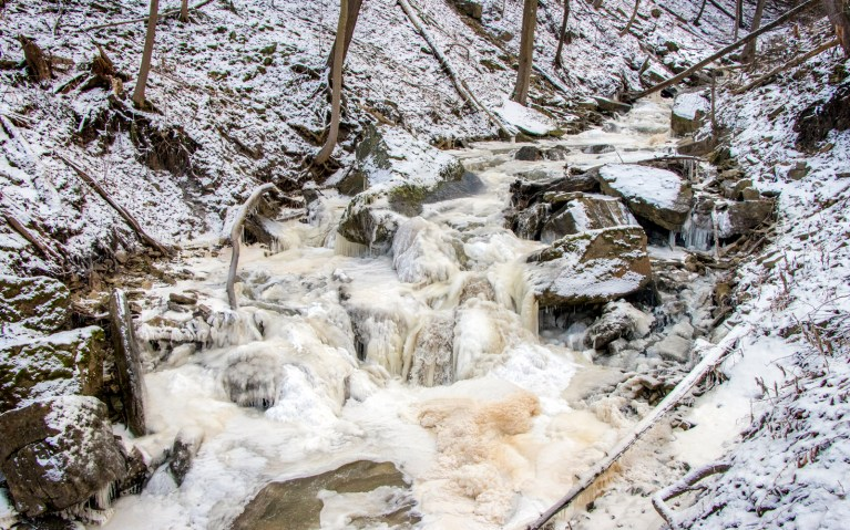 Upstream Borer's Creek - Hiking Hamilton's Borer's Falls :: I've Been Bit! A Travel Blog