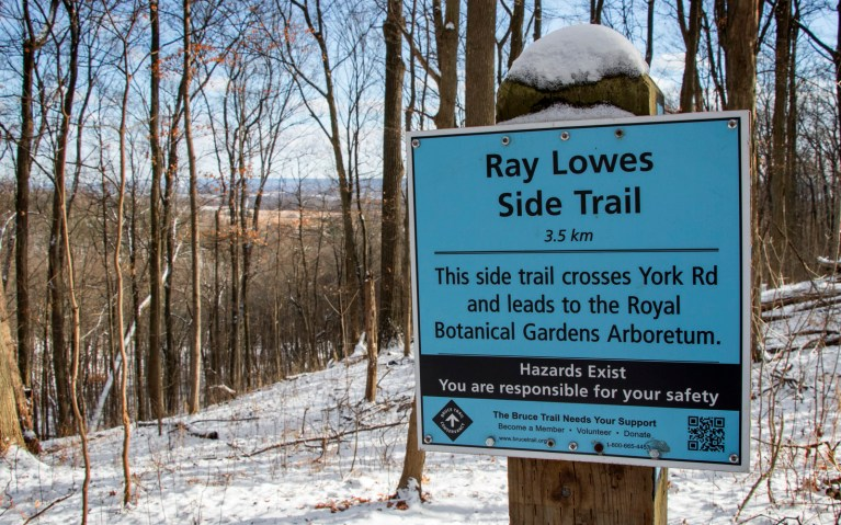 Ray Lowes Trailhead - Hiking Hamilton's Borer's Falls :: I've Been Bit! A Travel Blog