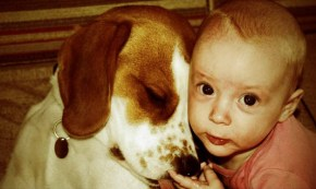 A dog. A baby. And a story that will brighten up your Monday.