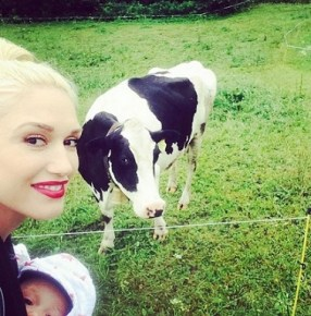 Gwen Stefani and her 5-month-old son Apollo