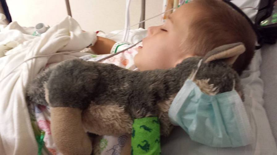 Your daily dose of cute: Boy requests surgery for his stuffed toy
