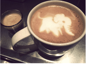 Too adorable to drink? See the cutest latte art ever