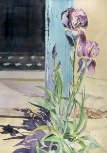 JMM_Stilllife_Iris