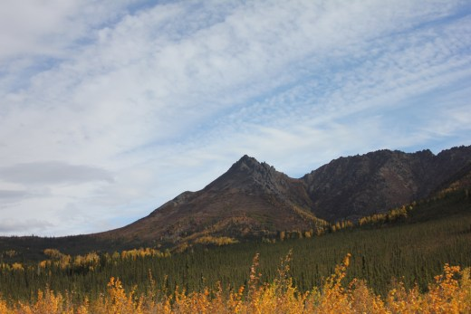 boreal_mountains_1080