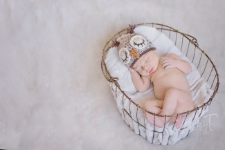 Chicago Newborn Photographer; Naperville Newborn Photographer, St. Charles newborn Photographer