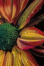 Irie Flower (Unframed)
