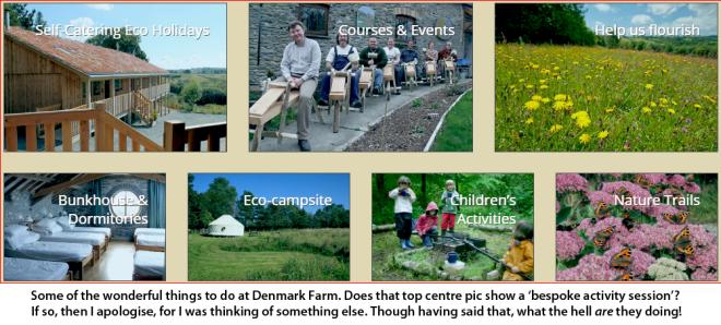 denmark-farm-activities