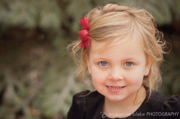 Christmas Mini Photo Session - Children's Photographer in Ham Lake