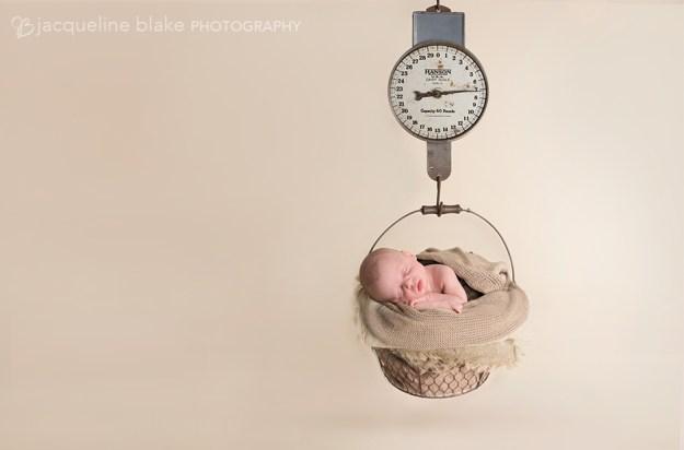 Newborn Scale Prop Photographer in Ham Lake