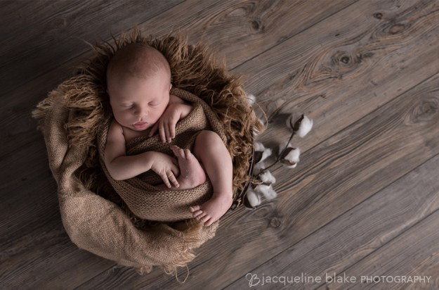 newborn photography with props in ham lake
