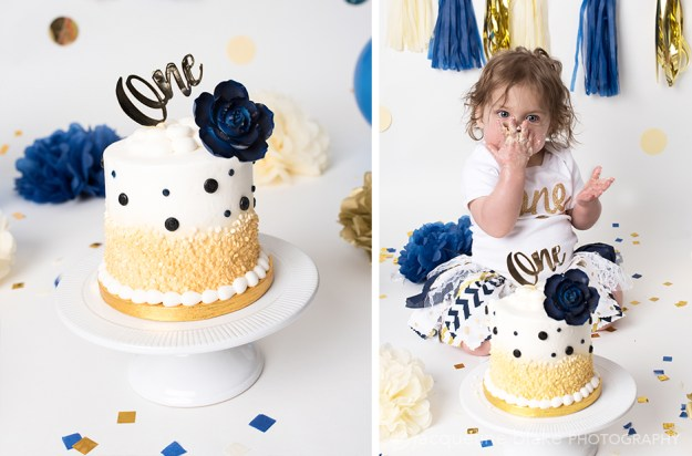 Portrait photographer in ham lake, Blaine, Smash Cake photographer, professional