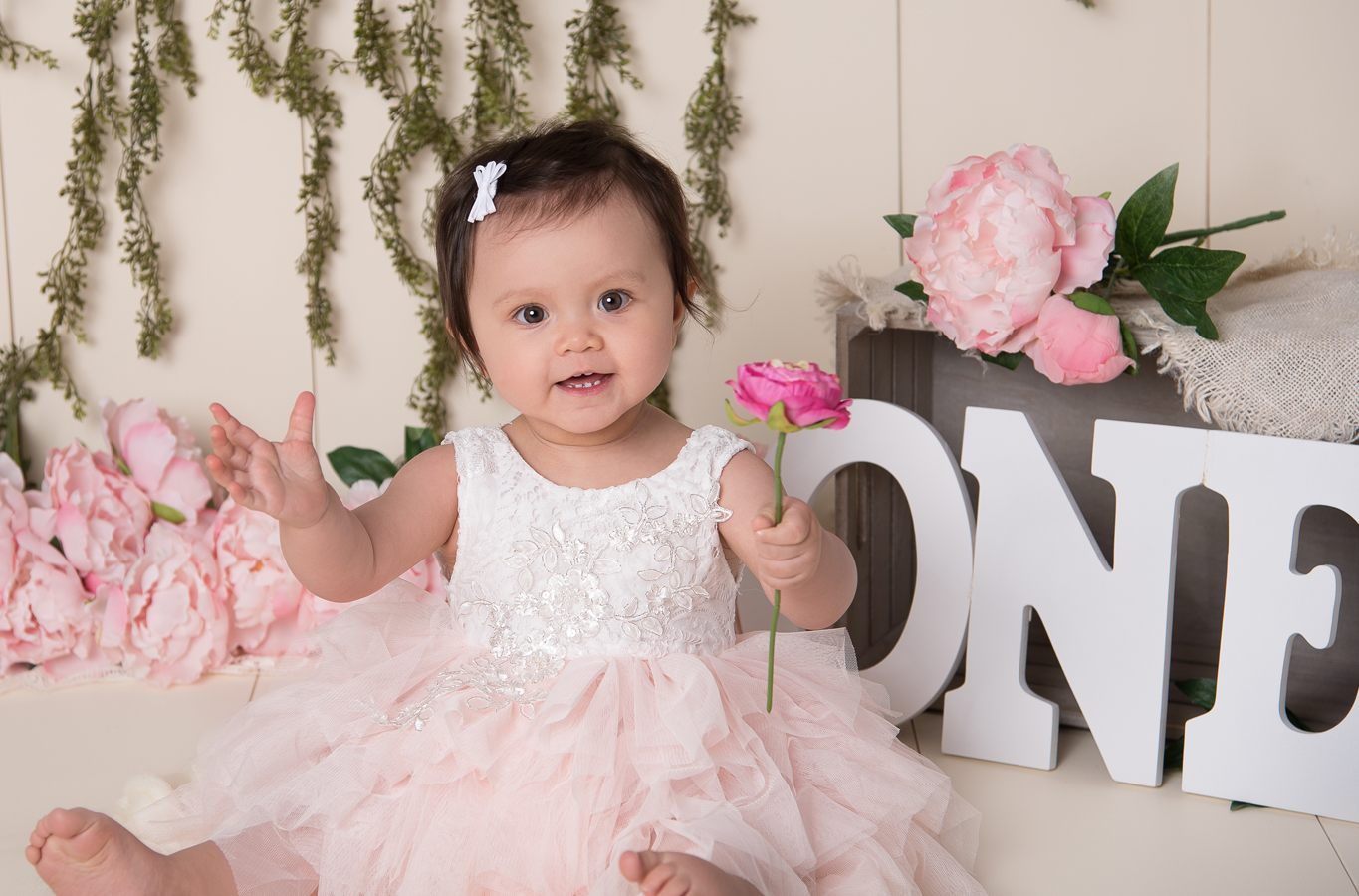 One Year Photos, Photo Studio, Ham Lake, Blaine, Andover