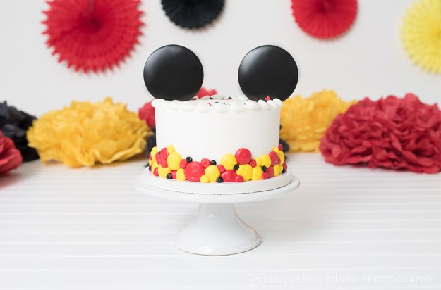One year mickey mouse cake smash photos in Ham Lake