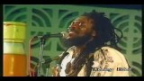 Dennis Brown Live in Concert