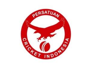 PCI logo 2016-17