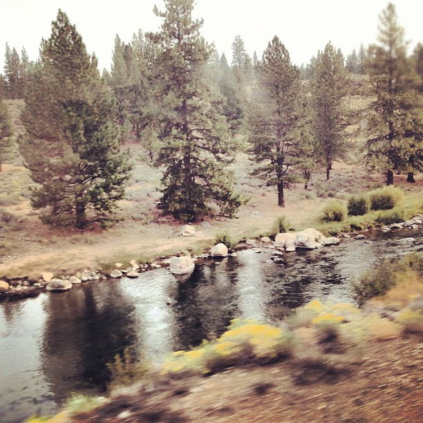 The mighty Truckee River