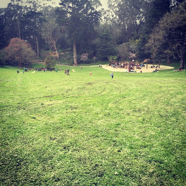 Checked in at Golden Gate Park