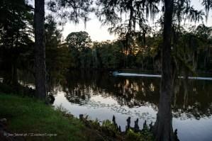 Random Picture of Week #10: Caddo Lake