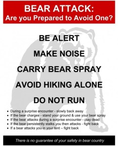 The Bear Warning signs in the Park.