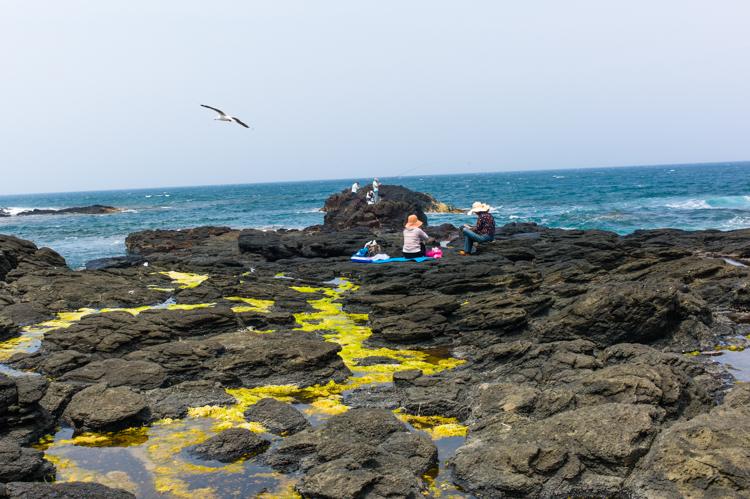 Australia Ocean Picnic Leica Jamie Chan