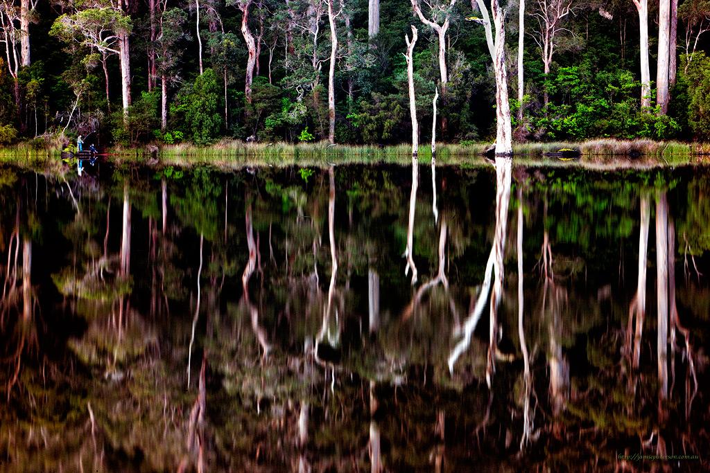 australian landscape photography, australian photographer, pemberton, impressionist photography